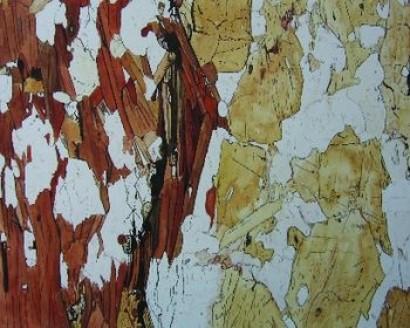 Biotit-Granat-Amphibolit